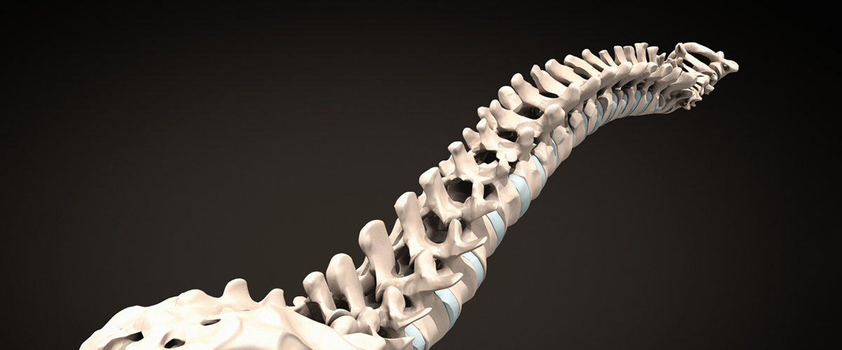 A rendering of a human spine against a black background