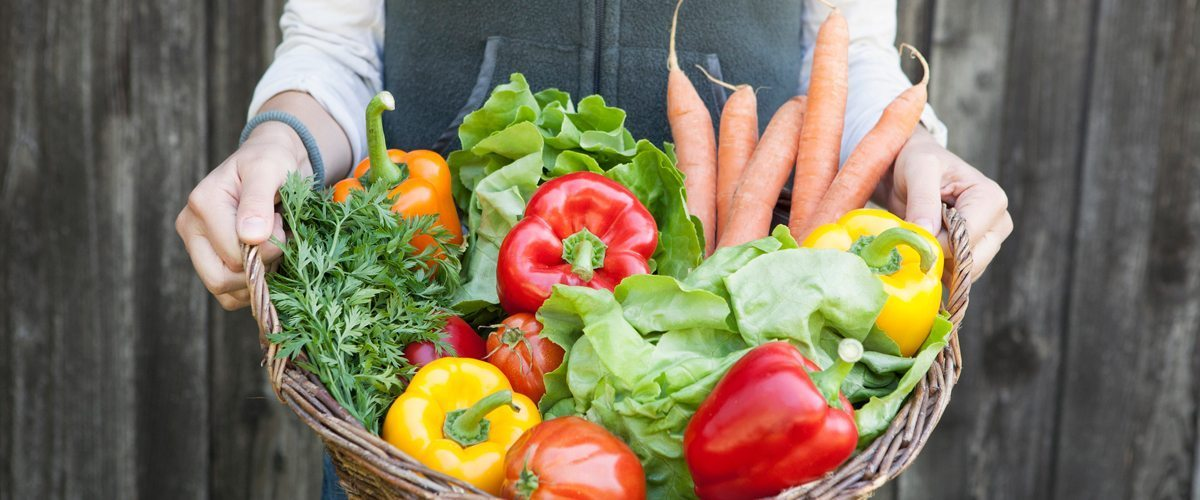 A basket of peppers, lettuce, carrots and herbs