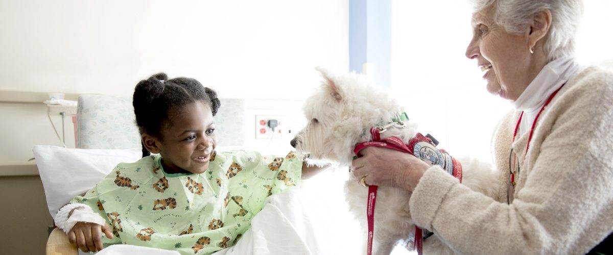 A pediatric patient pets a white therapy dog