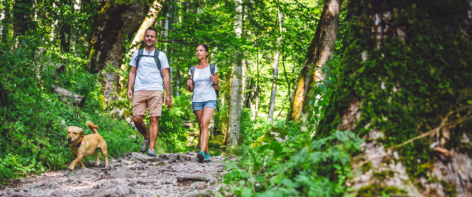 Man and woman walking on hiking trail with dog